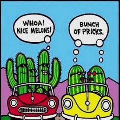 Cactus shouting at a per of melons