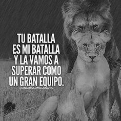 Inspirational Quotes About Success, Positive Quotes, Lion Quotes, Lion Love, Quotes En Espanol, Spanish Quotes, Life Motivation, Love Messages, Marketing