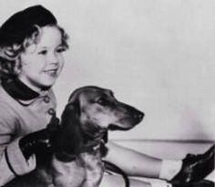 Shirley temple and Doxie