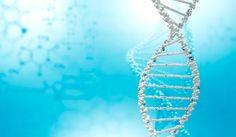 Говорят, что геномная медицина – медицина будущего. Это своего рода новая концепция профилактической медицины, основанная на выявлении генов, провоцирующих то или иное заболевание. Впоследствии, все полученные сведения помогут найти оптимальное решение для пациента, а также помогут предвидеть то или иное заболевание, к которому предрасположен человек, задолго до появления его симптомов! Узнай как можно больше о своем здоровье вместе с MEDTRAVELCLUB: 8 800 500-57-40.