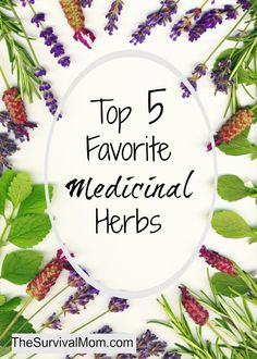 They are simple herbs, usually in capsule or tea form, that can be purchased at your local grocery or health food store.