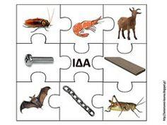 ΦΩΝΗ3 Greek Alphabet, Phonological Awareness, Learn To Read, Motor Skills, Speech Therapy, Literacy, Education, Learning, Puzzles