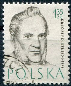 Poland, Famous People, Stamps, Medicine, Around The Worlds, History, Art, Seals, Europe