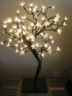 My Tree From Kirklands