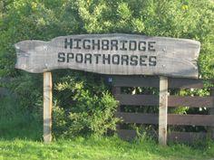 Home - Highbridge Sporthorses