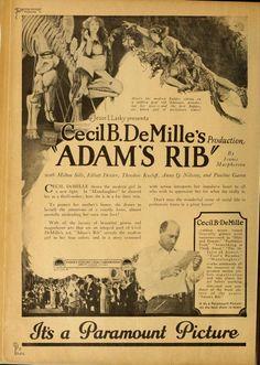 'Adam's Rib'