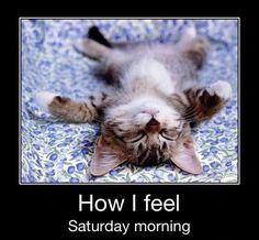 Instead of just Saturdays, this is how I feel the morning after working a game!!