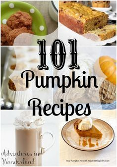 101 pumpkin recipes!!  Eat, drink and cook all things pumpkin spice!  Yummmm!