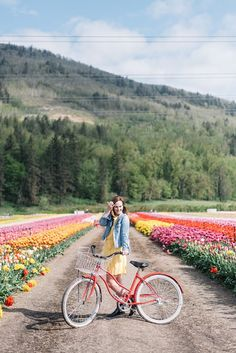 The Canadian Tulip Festival, Bloom Abbotsford Tulip Festival, is a must see in May. Add it to your list to see: Tulip Festivals Vancouver Hiking, Vancouver Vacation, Immigration Au Canada, Great Places, Places To See, Canada Lifestyle, Facts About Canada, Travel Tickets, Tulip Festival