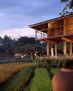 All #yoga sessions are conducted in the Yoga Barn looking out on the Suthep mountain range, two small lakes, lily ponds and a terraced working rice farm complete with its own family of water buffalo. #FSChiangMai