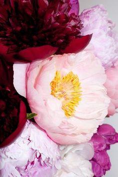 Floral inspiration {wineglasswriter.com/}