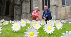 A great place to live - Beverley Town, East Yorkshire.  Why these giant daisies have popped up at Beverley Minster  Mortgage Advice in Beverley - http://beverleymoneyman.com   #Beverley #MortgageAdvice
