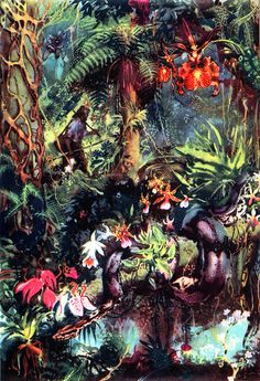 1963 Robinson Crusoe jungle illustration by Zdenek Burian. It's so, jungly!