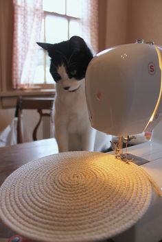 Even felines are interested in this charmingly shot and narrated tutorial on making a minimalist-chic basket with metallic thread, clothesline, and a Singer. That's it.   http://onmyhonoriwilltry.blogspot.com/2012/01/cotton-clothesline-baskets.html