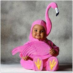 Esta debería ser la foto del día. Hermoso bebito disfrazado de Flamingo ♥
