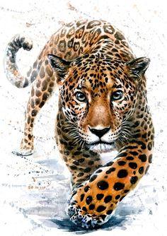 Personalized Animals Framed Canvas Print, Chocolate, Home Décor - Jaguar Cross Paintings, Animal Paintings, Animal Drawings, Big Cats Art, Cat Art, Jaguar Tier, Watercolor Animals, Watercolor Paintings, Jaguar Animal