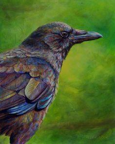 All American by Kim Middleton Oil ~ 10 x 8 Raven And Wolf, Raven Bird, Crow Art, Bird Art, Choucas Des Tours, Crow Painting, American Crow, Painting Competition, Jackdaw