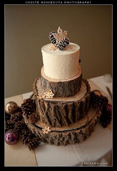 Winter wedding cake w/ edible snowflakes and pine cones.