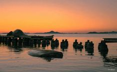 Amanecer en #LosAlcazares. Muelle de pescadores.