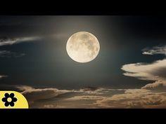 8 Horas Música Dormir, Música Tranquila para Dormir, Ondas Delta, Insomnia, Música Relajante, ✿3102C - YouTube