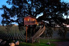 Wooden Tree House in Tuscany – Fubiz Media