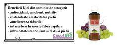 Beneficii Ulei din seminte de struguri:   - antioxidant, emolient, nutritiv  - restabileste elasticitatea pielii  - amelioreaza ridurile  - intareste si hraneste fibra capilara  - imbunatateste tonusul si textura pielii Vitis Vinifera, Fiber, Vines