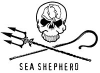 A letter to the Japanese Prime Minister from Captain Paul Watson. http://www.seashepherd.org.au/news-and-media/2014/07/09/a-letter-to-the-japanese-prime-minister-from-captain-paul-watson-1605 #SeaShepherd #defendconserveprotect