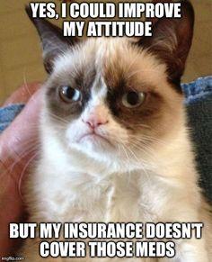 #GrumpyCat #meme Grumpy Cat™ stuff, gifts, offers couponsand meme on www.pinterest.com/erikakaisersot