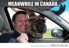 i think i'd like canada :)