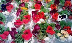 Flores Comestíveis 7                                                                                                                                                                                 Mais