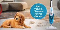 If you share your home with your pet, it is obvious that clean would be a tedious task. Read to know how to keep your house clean if you have pets at home. Vacuum Cleaner For Home, Vacuum Cleaners, Car Vacuum, Best Vacuum, Clean House, Cleaning Hacks, Happiness, Pets, Vacuums