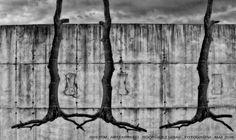 https://flic.kr/p/HiEUcK | INHOTIM . May 2016  26 | Inhotim, Museo y parque ecologico natural. Brumadinho, Minas Gerais. Fotografia: Artexpreso . Rodriguez Udias . *Photochrome Artwork Edition / BH, Brasil . May 2016 .. Website: rodudias.wix.com/artexpreso #Inhotim #artexpreso #photochrome #minasgerais #soubh
