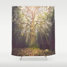 Buy Shower Curtains featuring The taller we are by HappyMelvin. Made from 100% easy care polyester our designer shower curtains are printed in the USA and feature a 12 button-hole top for simple hanging.