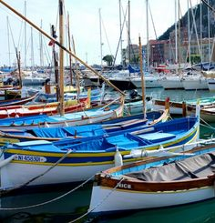 boats in many colors