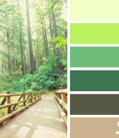 color stroll