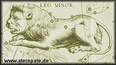 Kleines Sternbild des Nordhimmels:  http://sternpate.de/sternbilder/kleiner-loewe/