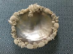 Large pearl oyster shell