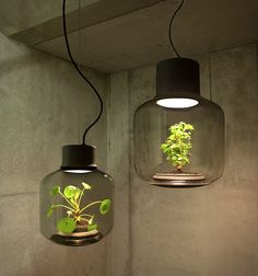 Mygdal Plant Lamp aims to mix a couple of great environment features, as it so clearly states on its name: plants and light. Nui Studio really did a nice number with this combo, you can get them in two different options, a hanging or a standing glass pot with the plant inside, the plant is self sufficient: no need to water it or let it breathe, the LED light will give it the necessary energy to photosynthesize.
