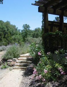 pretty natural garden