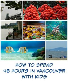 How to Spend 48 Hours in Vancouver with Kids
