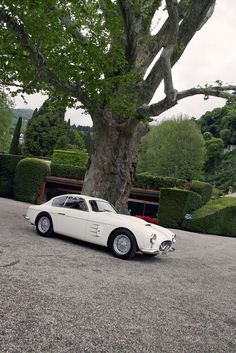1953 Fiat 8V Berlinetta Zagato