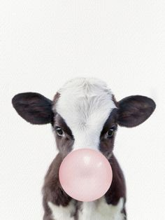 Bubble Gum Baby Cow Mini Art Print by Amy Peterson Art Studioa,,C/ - Without Stand - x Iphone Background Wallpaper, Animal Wallpaper, Disney Wallpaper, Super Cute Animals, Cute Baby Animals, Funny Animals, Wild Animals, Cute Animal Drawings, Cute Animal Pictures
