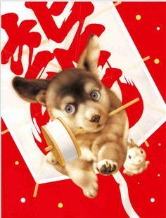 日本动物插画家- 村松诚