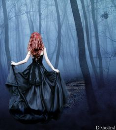Ivy - The Dark Forest