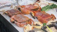 Really Big Crab