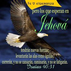 Isaias 40:31
