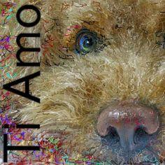 PCペイントで絵を描きました! Art picture by Seizi.N:    久しぶりに愛犬ティアモの絵を描きました、どアップのティアモも可愛いでしょう、親バカでしょうか?...