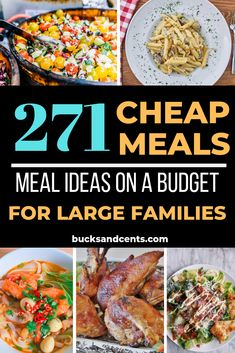 Cheap Meal Recipes Fit for Royalty A collection of over 270 cheap meal ideas including American, Italian, and Tex-Mex dishes. If you are looking for cheap meal plans, look no further! Frugal Meals, Budget Meals, Budget Recipes, Freezer Meals, Planning Budget, Meal Planning, Financial Planning, Large Family Meals, Large Families