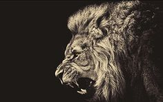 The lion symbolizes assertion of the feminine and the power of the female sun.