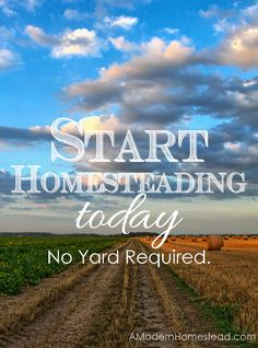 """Think you need a big piece of land to be able to live a simpler, more """"homestead"""" style life? THINK AGAIN!  Start Homesteading Today. No Yard Required."""